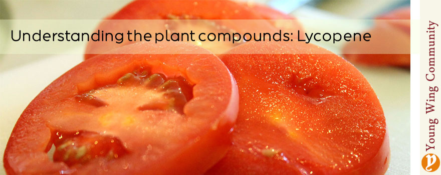 Understanding the plant compounds: Lycopene