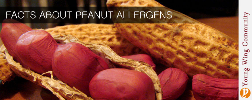 Facts about peanut allergens