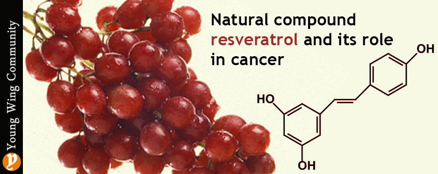Natural compound resveratrol and its role in cancer